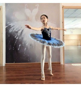 Girls little swan lake tutu skirt blue velvet ballet dance dress calssical ballerina ballet dance dress for kids