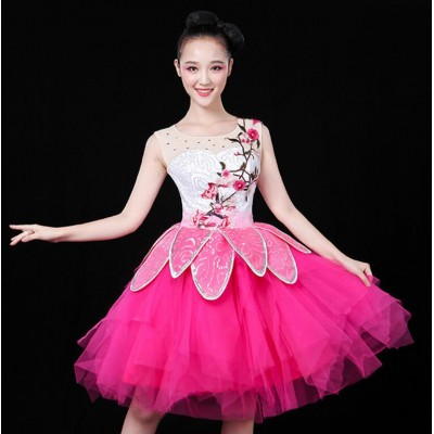 Hot pink fuchsia gradient Princess Chinese Costume Women Fairy Costume Clothing modern dance Trailing  jazz singers Dress Chinese Ancient Clothes
