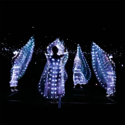 Led light Belly dance wings glitter modern dance stage performance hallow party performance white led light cosplay props
